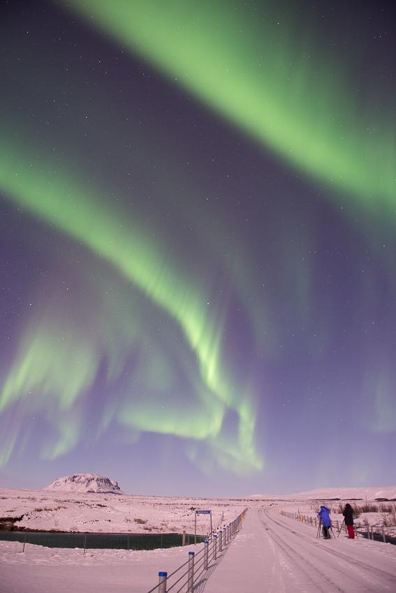 01 - aurora purple