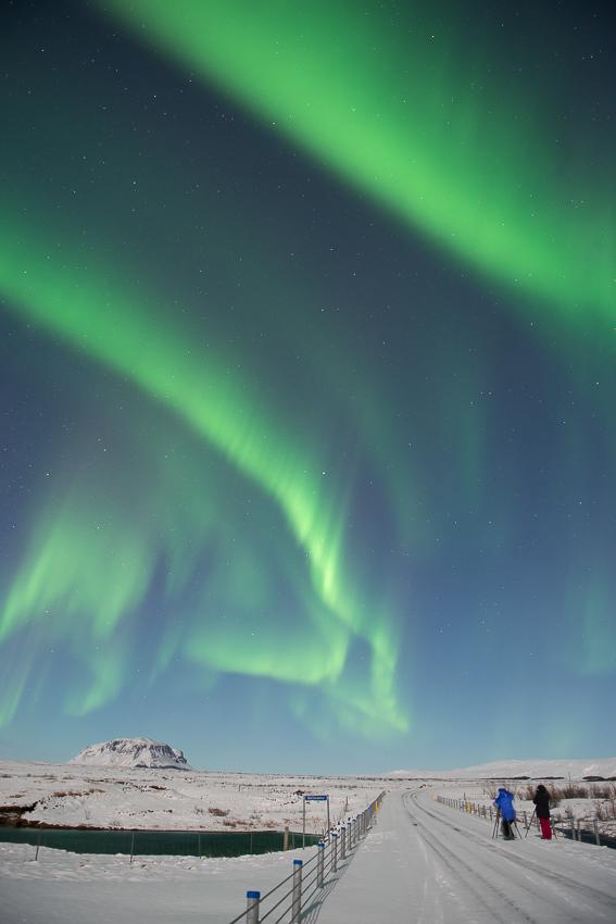 02 - aurora green