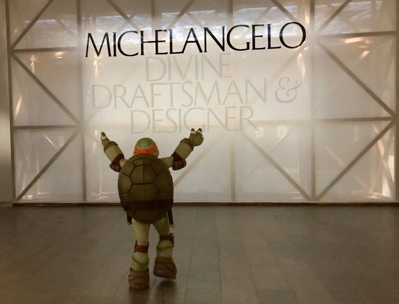 Michelangelo, Party Dude, Beholds the Work of His Renaissance Namesake IRL