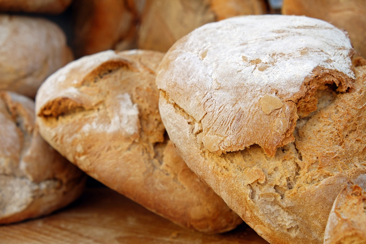 Is It Safe To Eat Moldy Bread? : The Salt : NPR